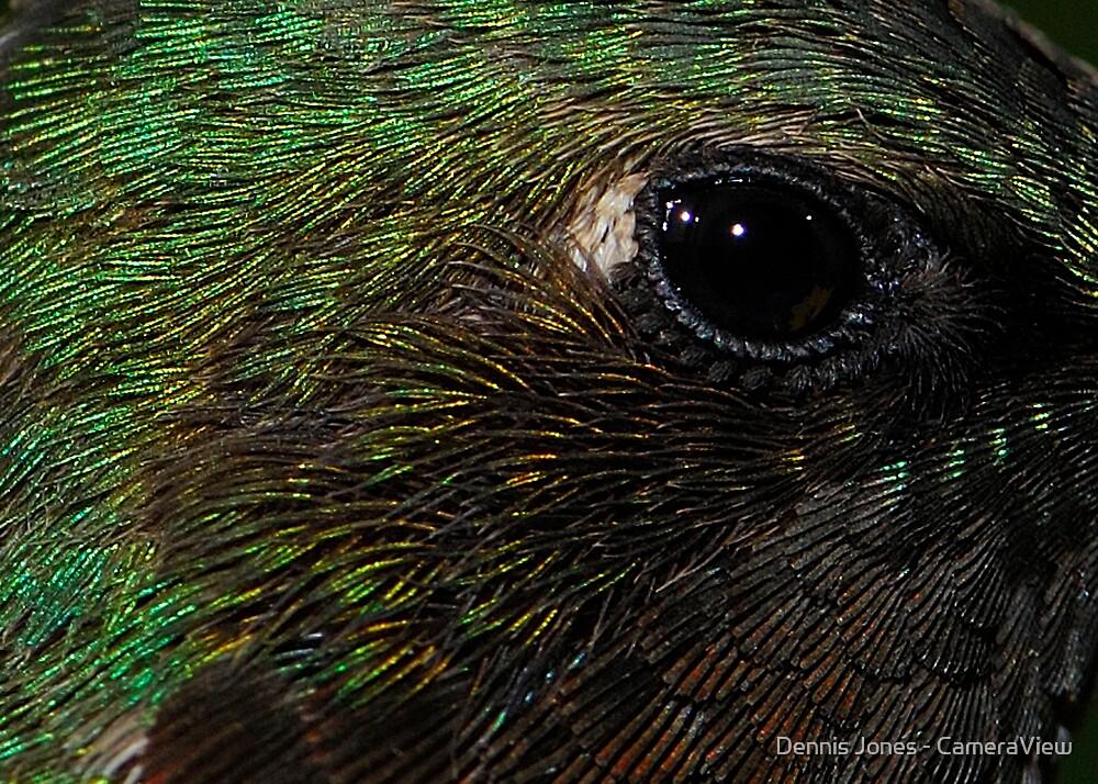 Eye Exam #1 by Dennis Jones - CameraView