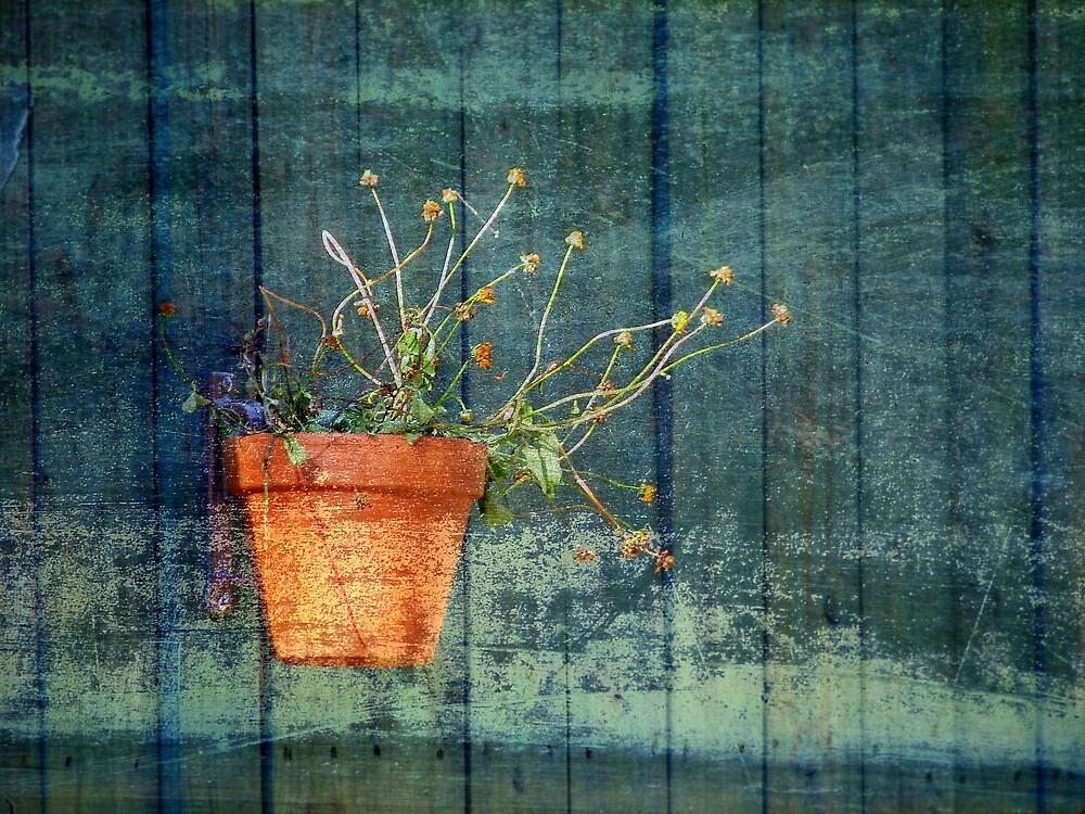 Garden Art by JanG