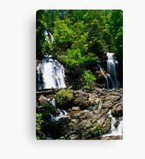 Anna Ruby Falls 2 Canvas Print