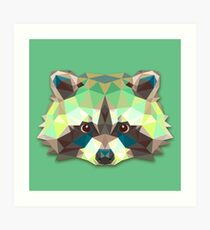Raccoon Animals Gift Art Print
