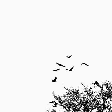 Birds of a feather by alibitheband