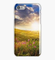 wild flowers on the mountain top at sunset iPhone Case/Skin