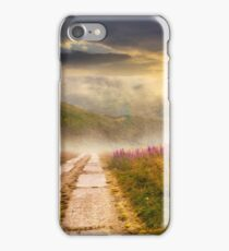 wild flowers on the hillside at sunset iPhone Case/Skin