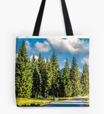 mountain road in autumn forest Tote Bag