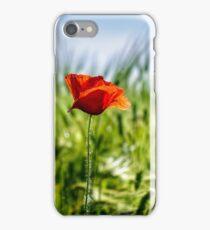 red poppy in the wheat field iPhone Case/Skin