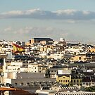 Madrid from Above - Hot Rooftops and a Giant Spanish Flag by Georgia Mizuleva