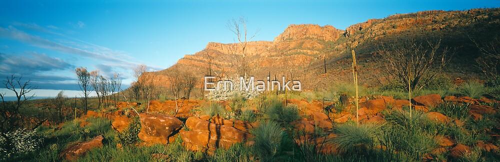 Wilpena Pound, Flinders Ranges, South Australia. by Ern Mainka