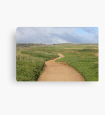 Nature's Path Canvas Print
