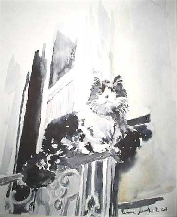 1909 by crirossi