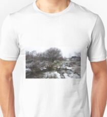 Snow Dusted Wetland Trees And Scrub T-Shirt