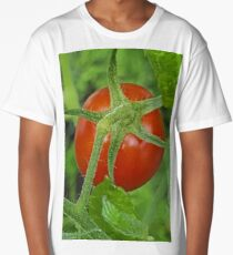 A container garden's fruit Long T-Shirt