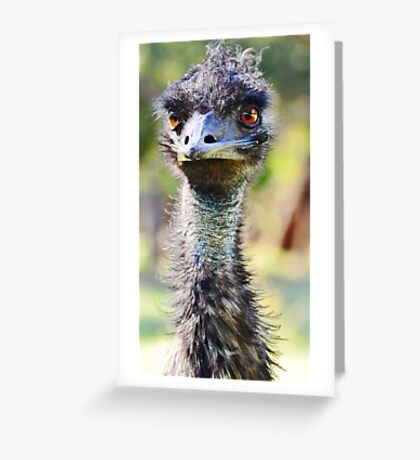 Flight? Bah, it's overrated.   Greeting Card
