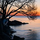 Just Before Sunrise - Bright Cold and Colorful on the Lakeshore by Georgia Mizuleva