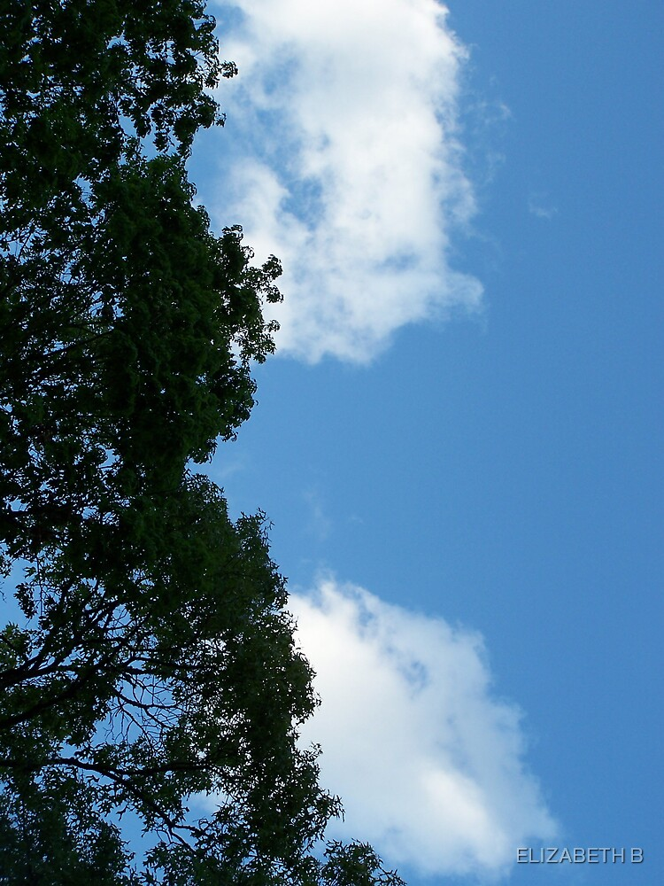 SKY WIDE OPEN by ELIZABETH B