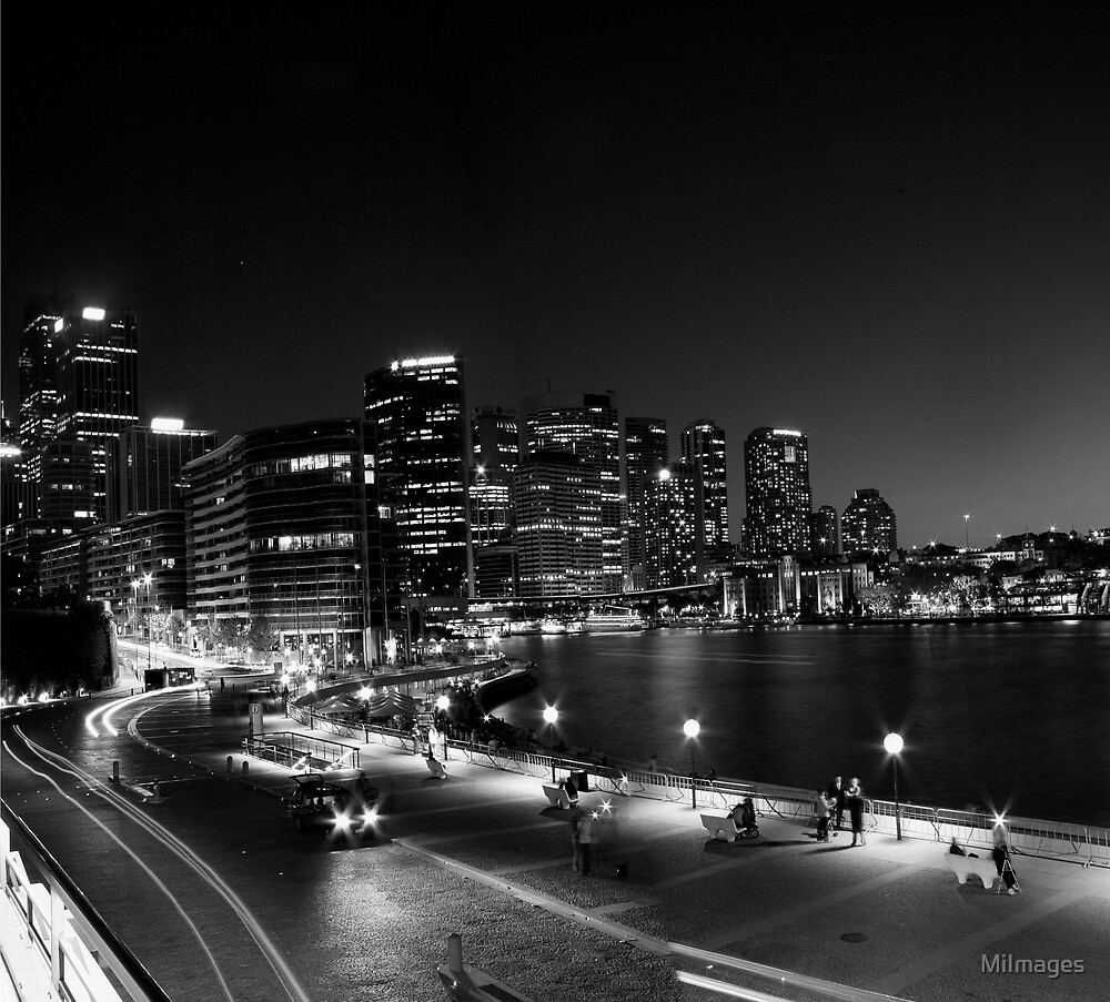 Sydney Harbour Monochrome by MiImages