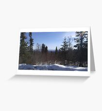 Trees in the Spring II Greeting Card