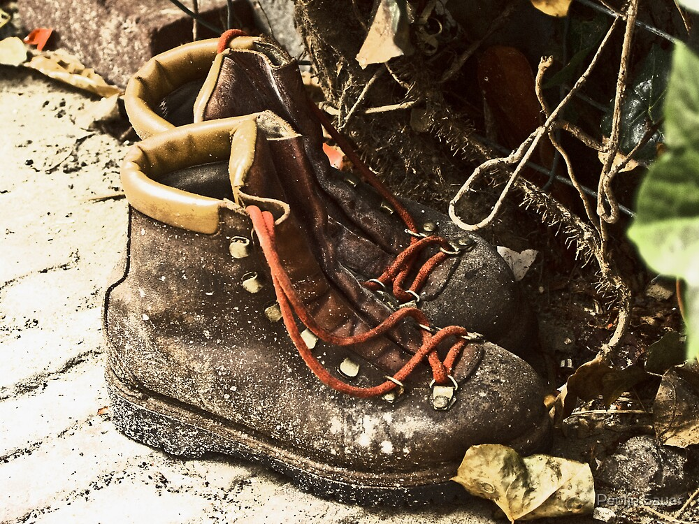 These Boots Are Made For Walking by Pepijn Sauer