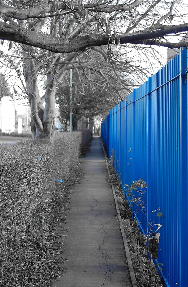 Blue Fence by mikepom