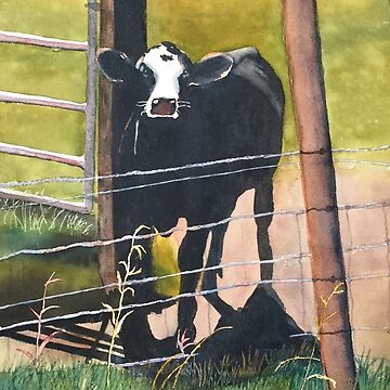 Curious Cow by LindaStout