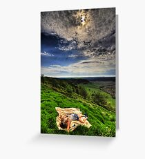 Murder On The Moor... Greeting Card
