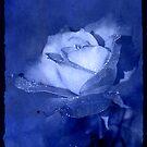 Blue Moods by Jonicool
