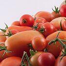 Tomato Hill by Bo Insogna