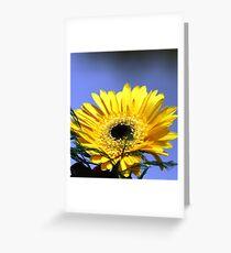 Yellow Dwarf Sunflower Greeting Card