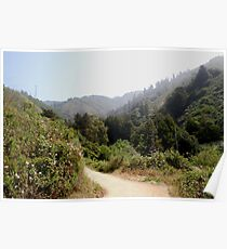 morning fog in the coastal mountains Poster