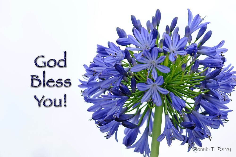 God Bless You by Bonnie T.  Barry
