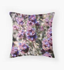 Mojave Violet Throw Pillow