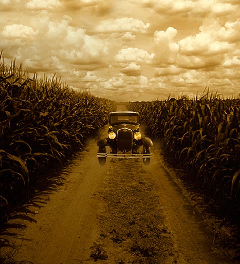 Model A in a Corn Field  by kelleybear