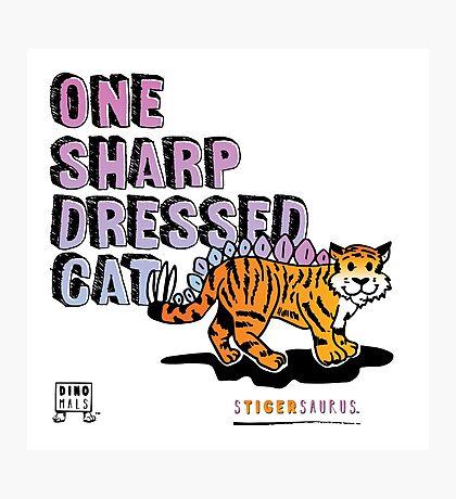 One Sharp Dressed Cat Photographic Print
