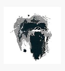 King Kong Ink Blot on Denham's Map Photographic Print