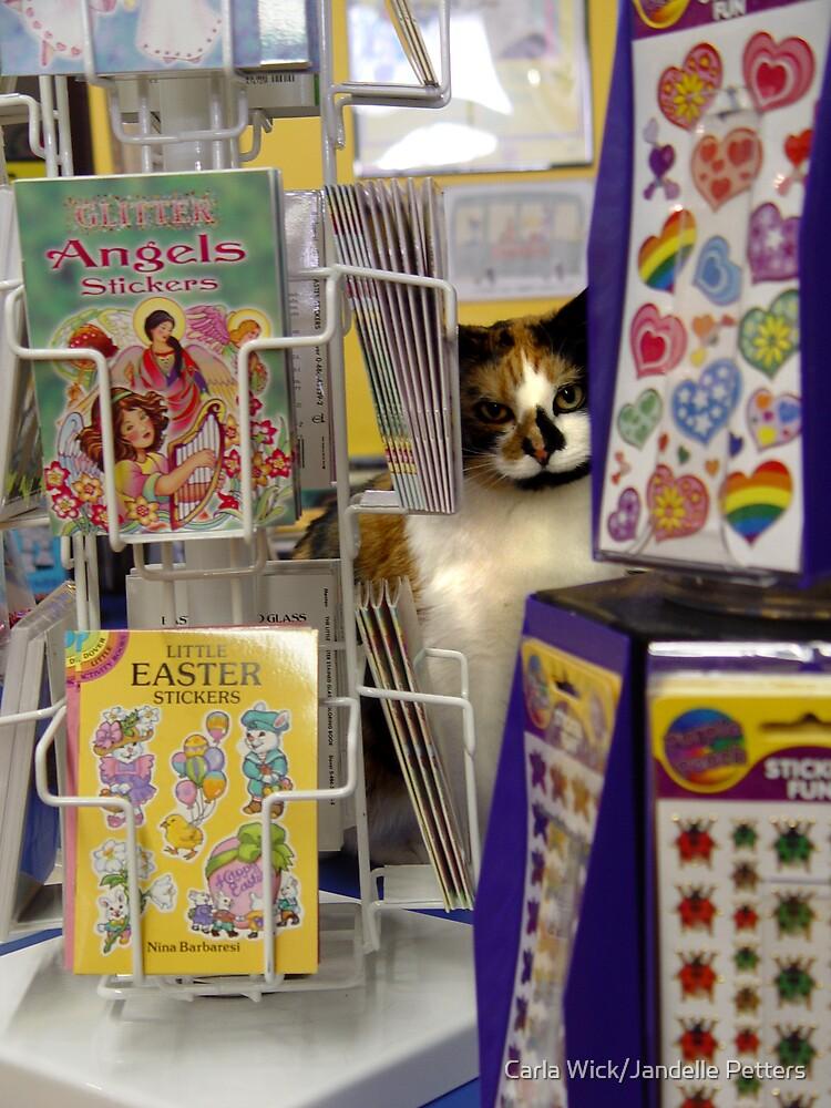 Hiding Behind Stickers by Carla Wick/Jandelle Petters