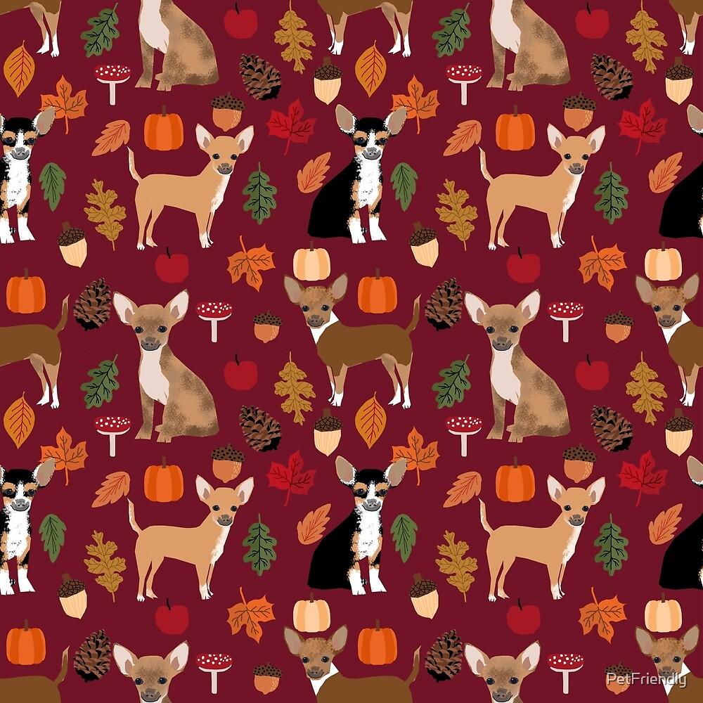 Chihuahua autumn fall dog breed pet portrait acorn pumpkin  by PetFriendly