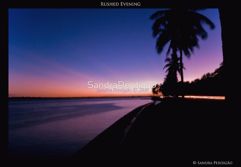 Rushed Evening by SandraPerdigao