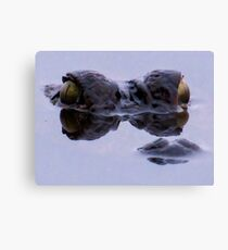 Alligator eyes Canvas Print