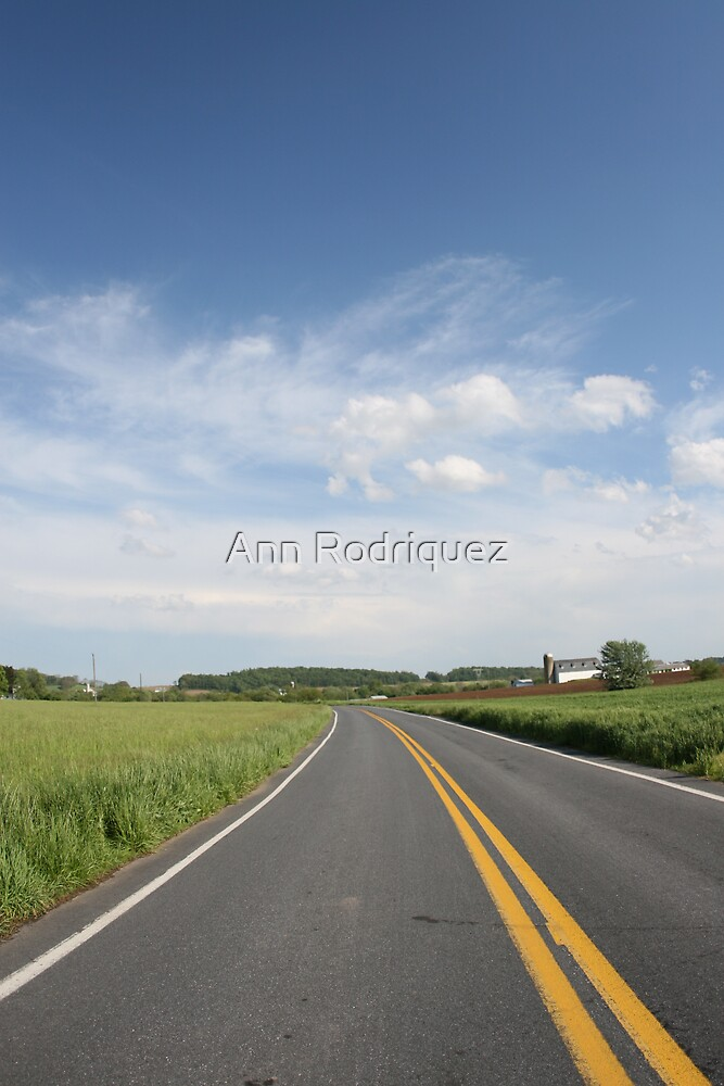 Somewhere Down the Road by Ann Rodriquez
