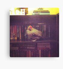 Lienzo Librería de pollo