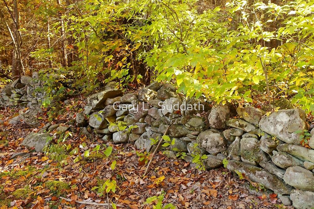 Stone Fence by Gary L   Suddath