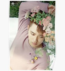Kyungsoo KOKO BOP EXO Poster