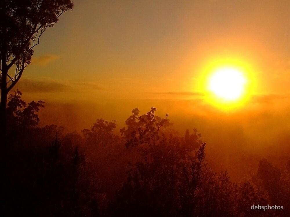 """""""Solar"""".. by debsphotos"""