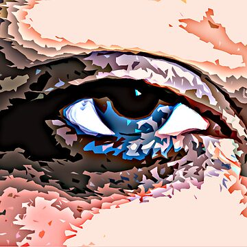 Eye of the Beholder by Abisilla