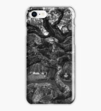 Angel Oak Tree 2 iPhone Case/Skin