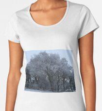 Snowy Serenity Women's Premium T-Shirt