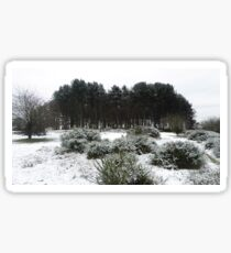 Snowy Hillside Bushes And Woodland Tuft Of Trees Sticker