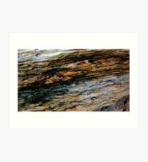 BEACH ROCK PATERNS & COLORS Art Print