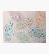 Leaf Art Photographic Print