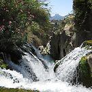 Waterfall of Algar. by ienemien