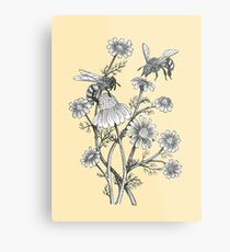 bees and chamomile on honey background  Metal Print